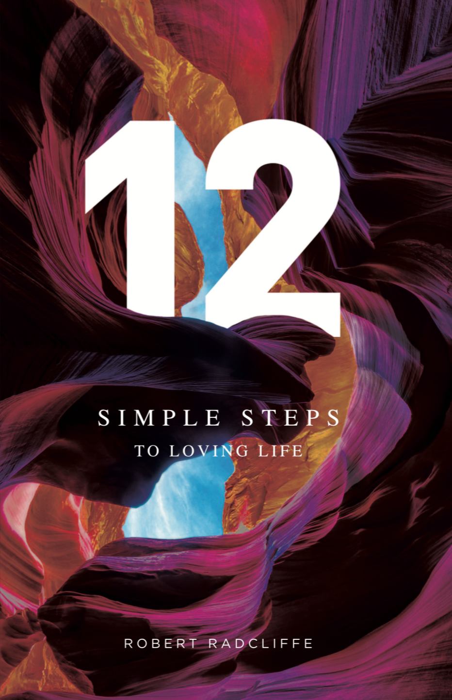 12 Steps by Robert Radcliffe Front Cover