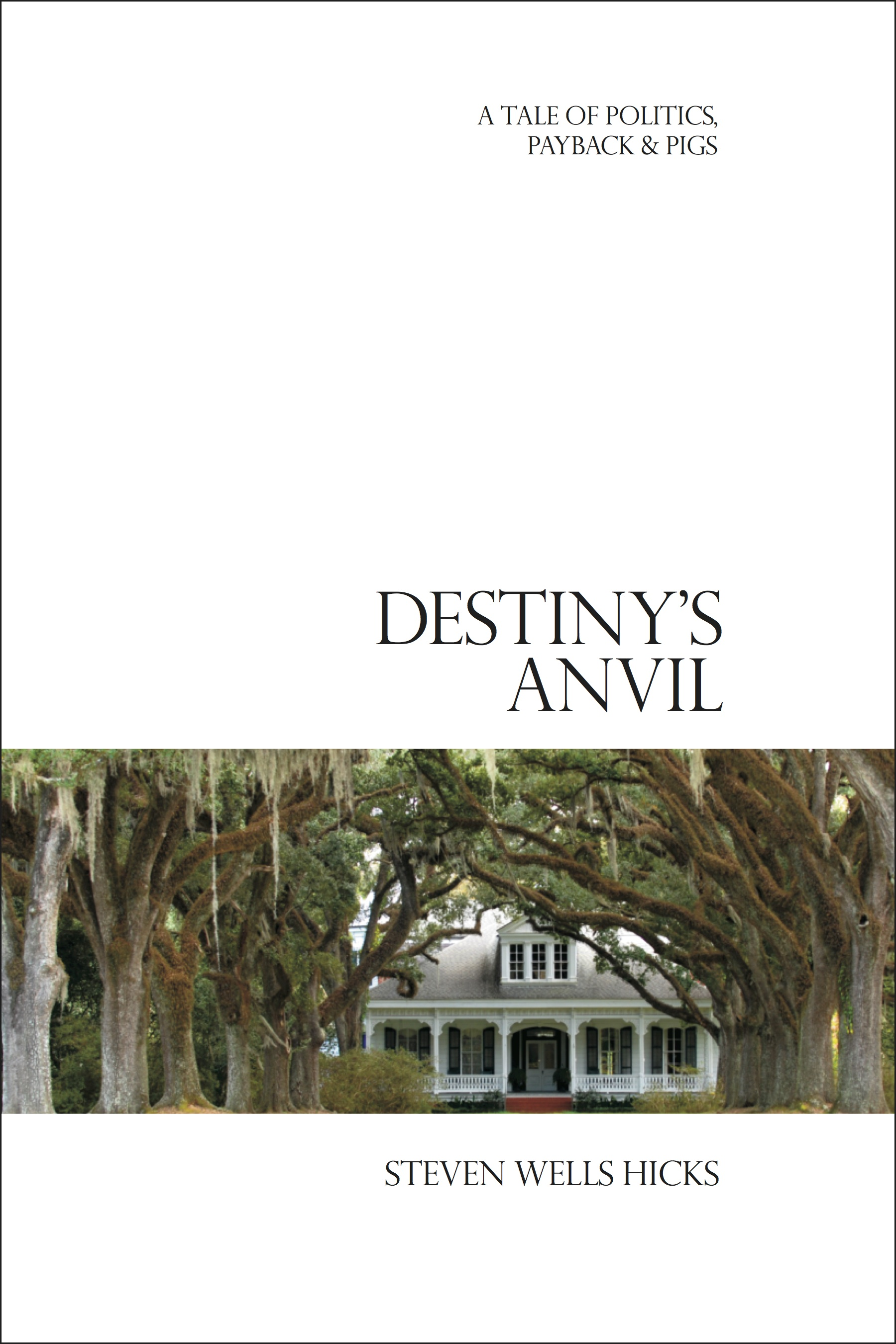 Destiny's Anvil Book Cover